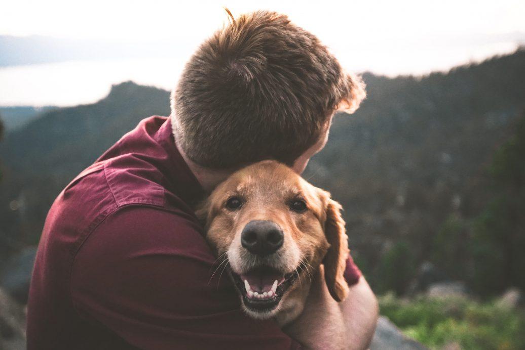 Understanding Pet Loss Grief Part 1: Why Pets Matter